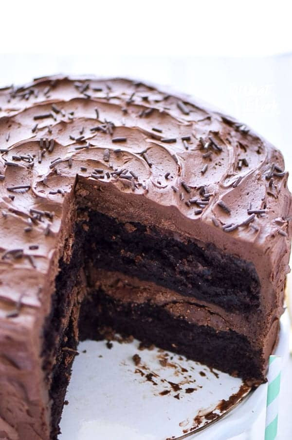 Dairy Free Chocolate Cake  The Best Gluten Free Chocolate Cake Recipe What the Fork