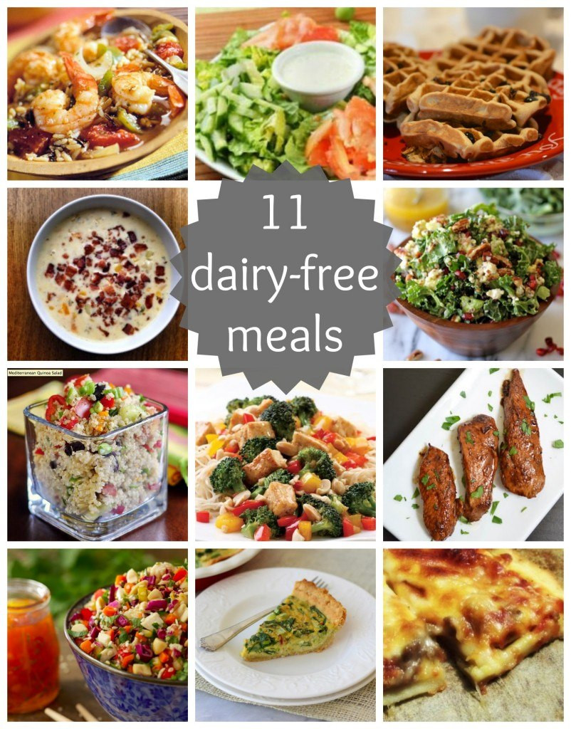Dairy Free Dinner Recipes  11 Dairy Free Meals