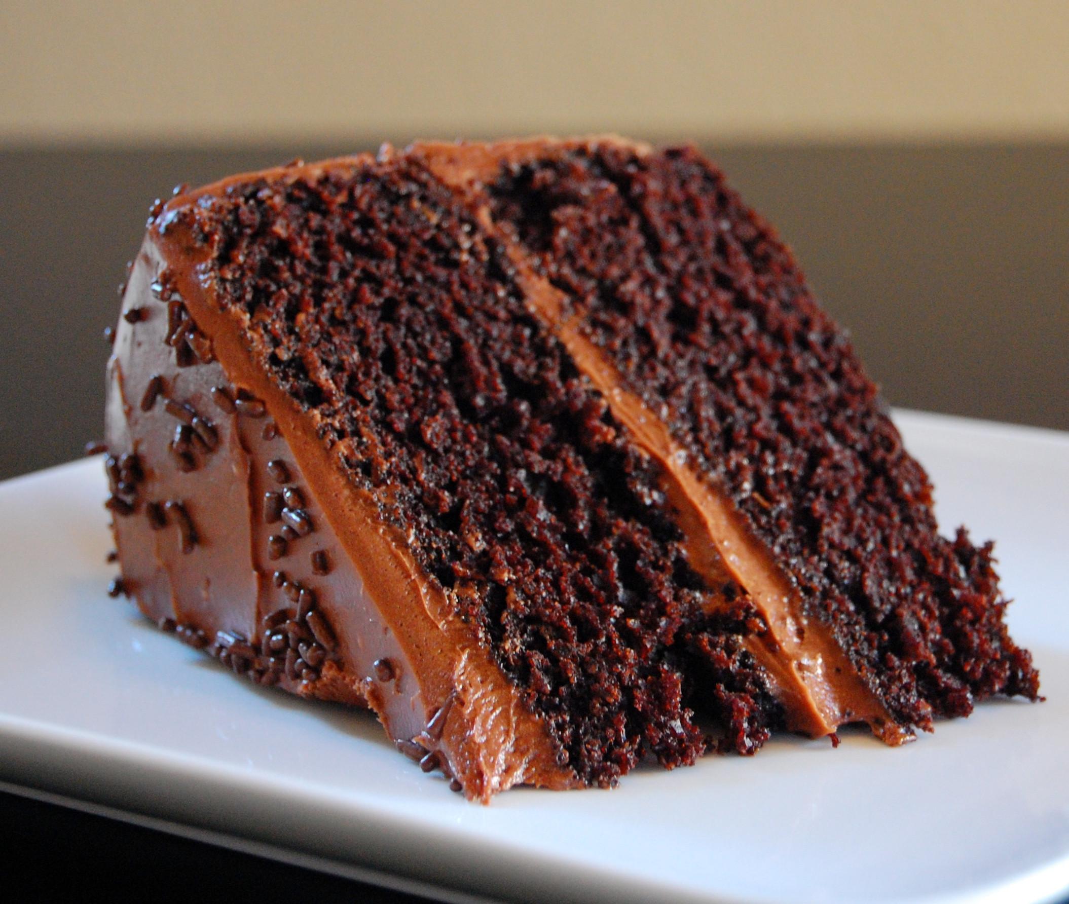 Dark Chocolate Cake  chocolate barometer cake how to test your new kitchen