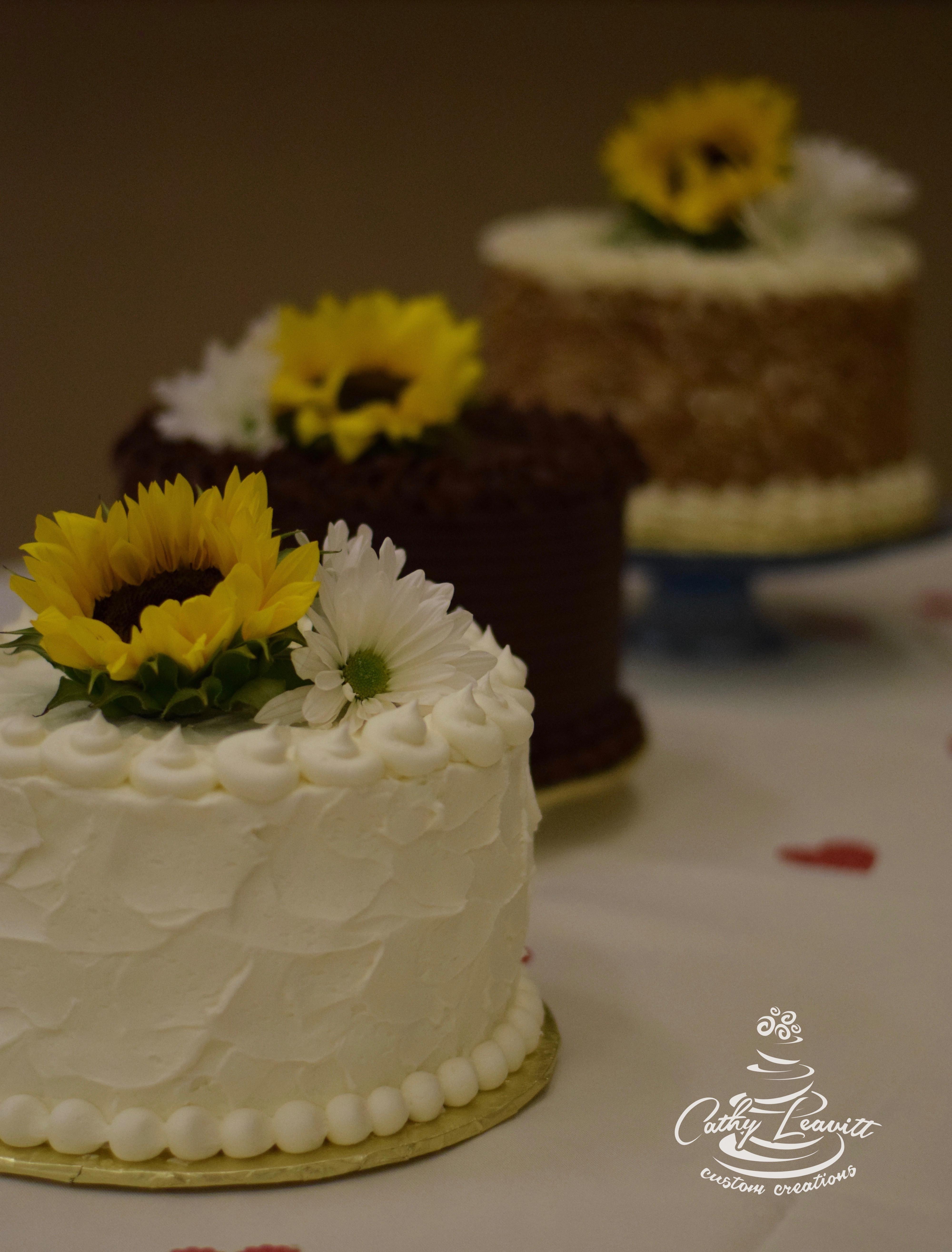 Dessert Colorado Springs  Specialty dessert cakes Cathy Leavitt custom creations