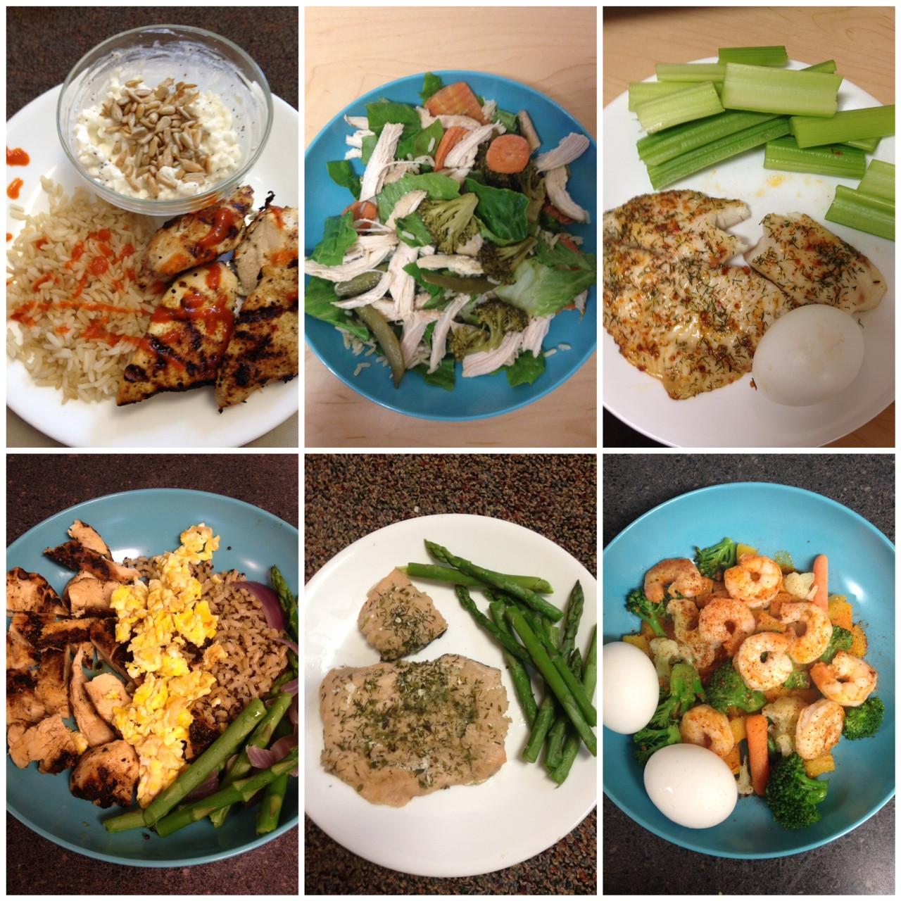 Diet Dinner Recipes  DAILY DIET MEAL IDEAS Lauren Gleisberg