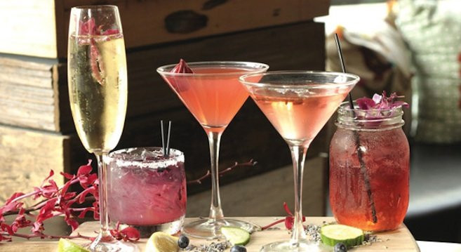 Dinner And Drinks  Cucina Urbana excels at after dinner drinks and