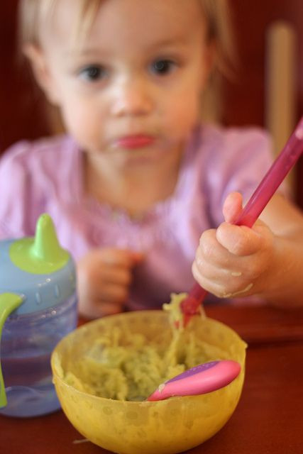 Dinner Ideas For Picky Eaters Adults  Toddler meals Awesome blog post about picky eaters and