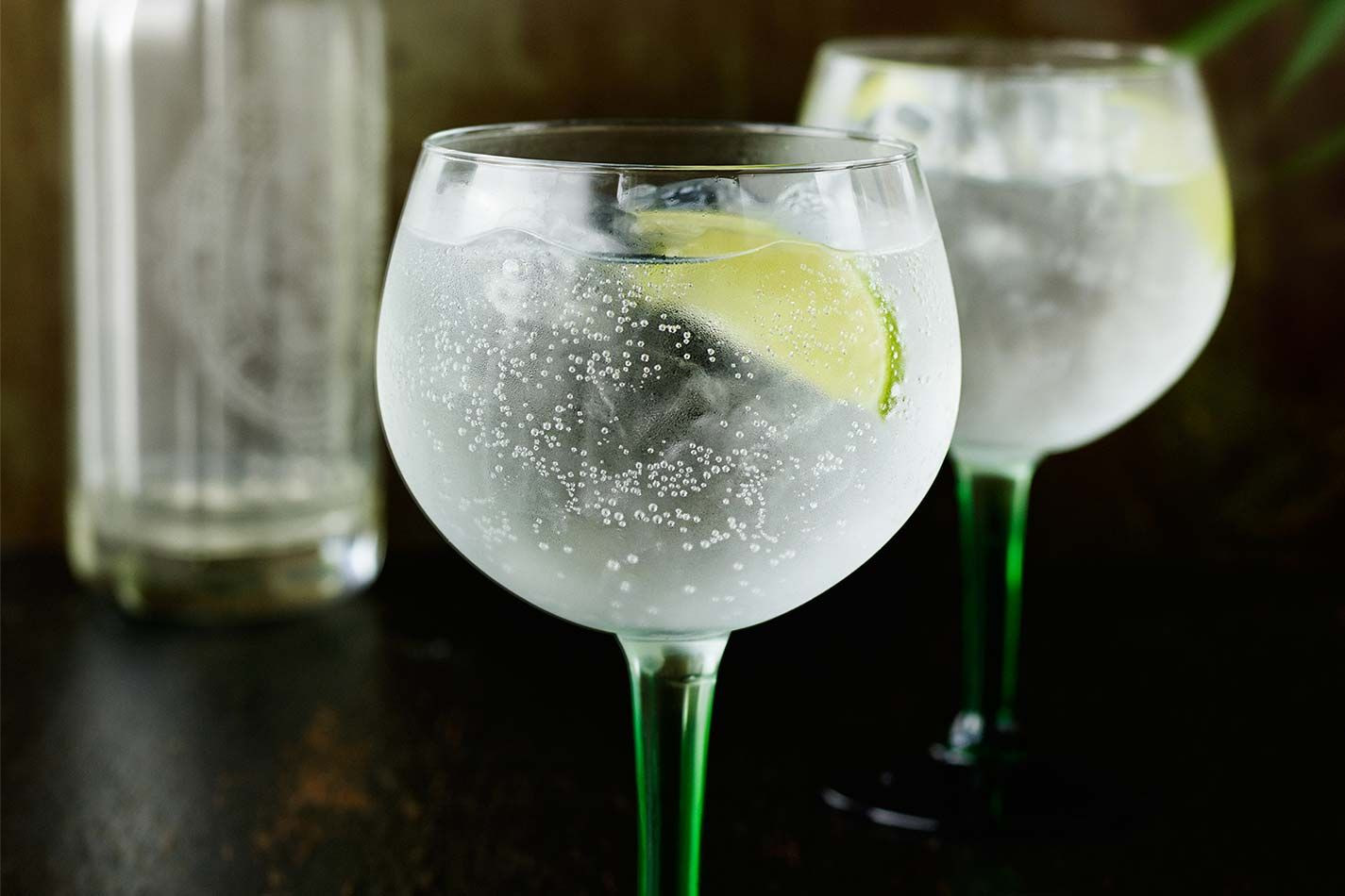 Drinks To Make With Gin  Perfect Gin & Tonic Cocktail Recipe