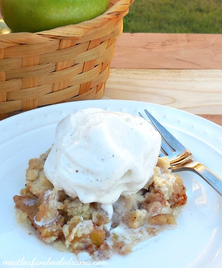 Easy Apple Dessert Recipes With Few Ingredients  Cinnamon Apple Crisp Meatloaf and Melodrama