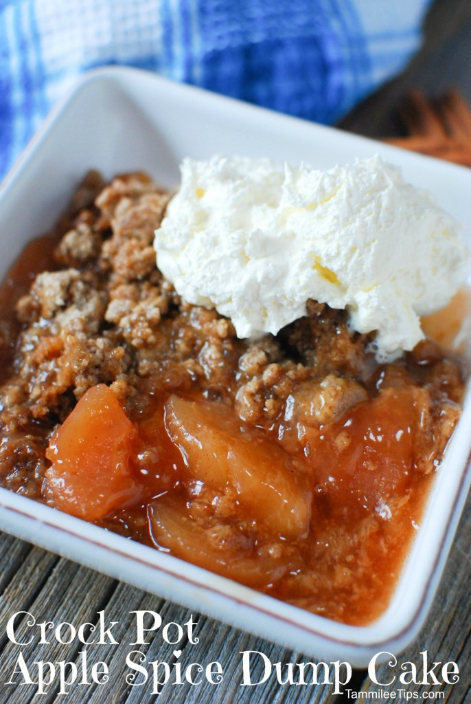 Easy Apple Dessert Recipes With Few Ingredients  Super easy Crock Pot Apple Spice Dump Cake Recipe