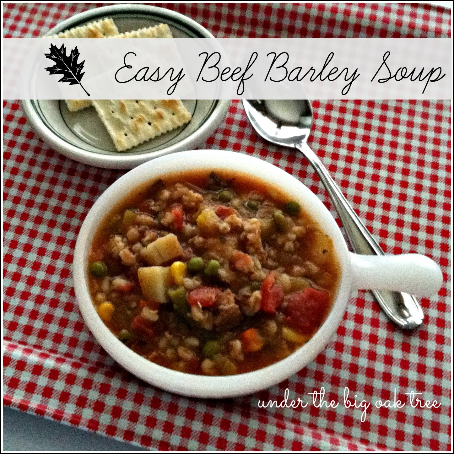 Easy Beef Barley Soup  Under the Big Oak Tree Easy Beef Barley Soup