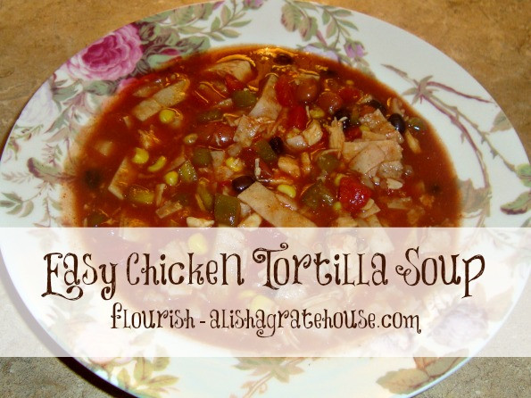 Easy Chicken Tortilla Soup Recipe  Chicken Tortilla Soup Crock Pot Recipe