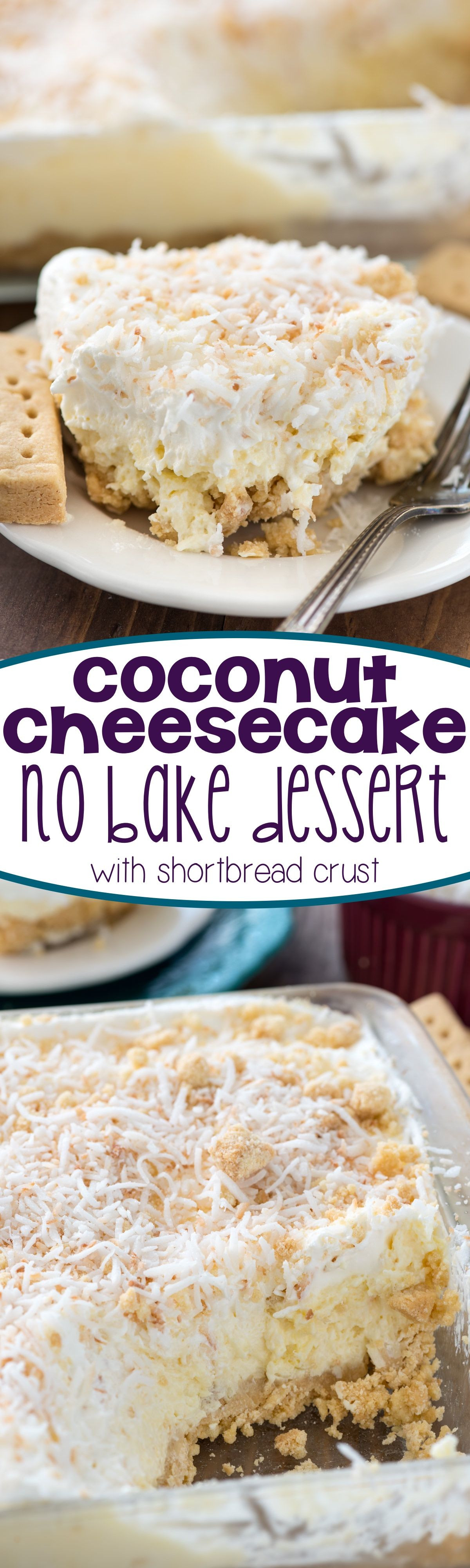 Easy Coconut Dessert Recipes  Easy Coconut Cheesecake No Bake Dessert Recipe this