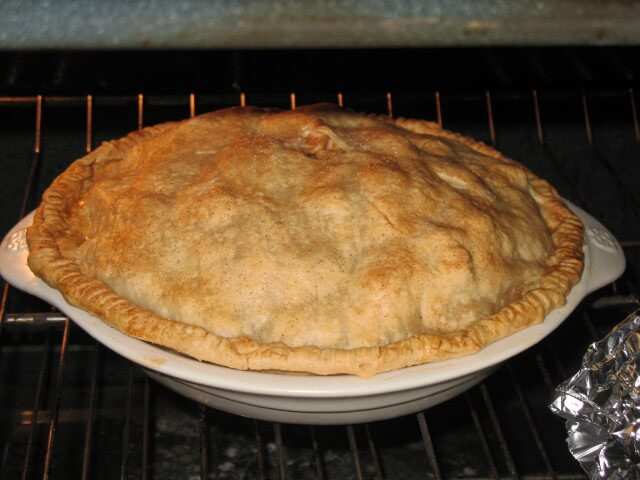 Easy Homemade Apple Pie  Homemade Apple Pie from Scratch Recipe