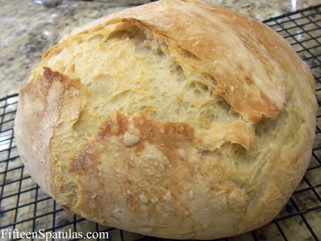 Easy Homemade Bread Recipe  A Bread Recipe for Those Who Don t Know How To Boil Water