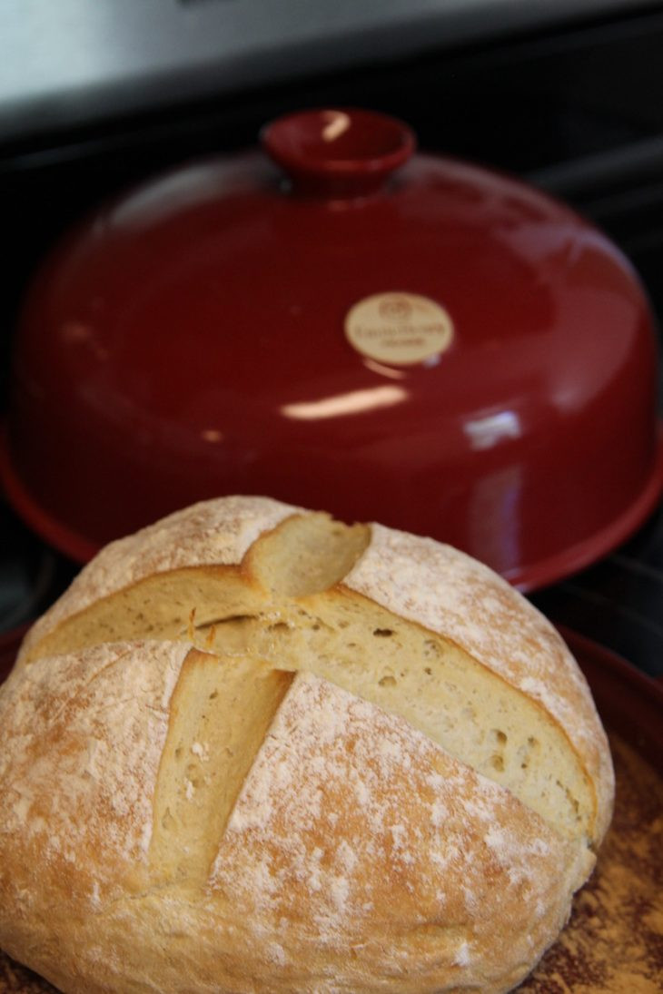Easy Homemade Bread Recipe  Easy Homemade Bread Recipe Just Short of Crazy