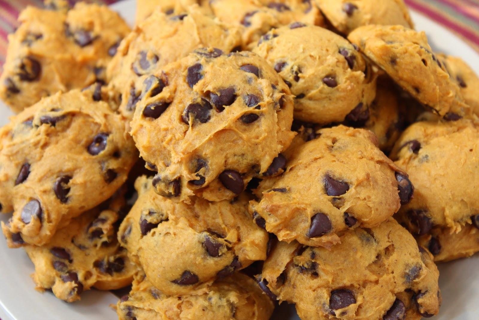 Easy Pumpkin Chocolate Chip Cookies  booturtle s show and tell Easy Pumpkin Chocolate Chip Cookies