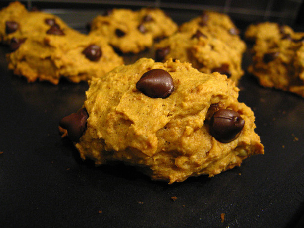 Easy Pumpkin Chocolate Chip Cookies  Easy Pumpkin Chocolate Chip Cookies Recipe Food