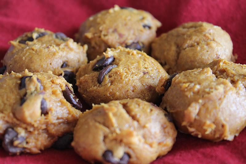 Easy Pumpkin Chocolate Chip Cookies  my joy in the journey Easy Pumpkin Chocolate Chip Cookies