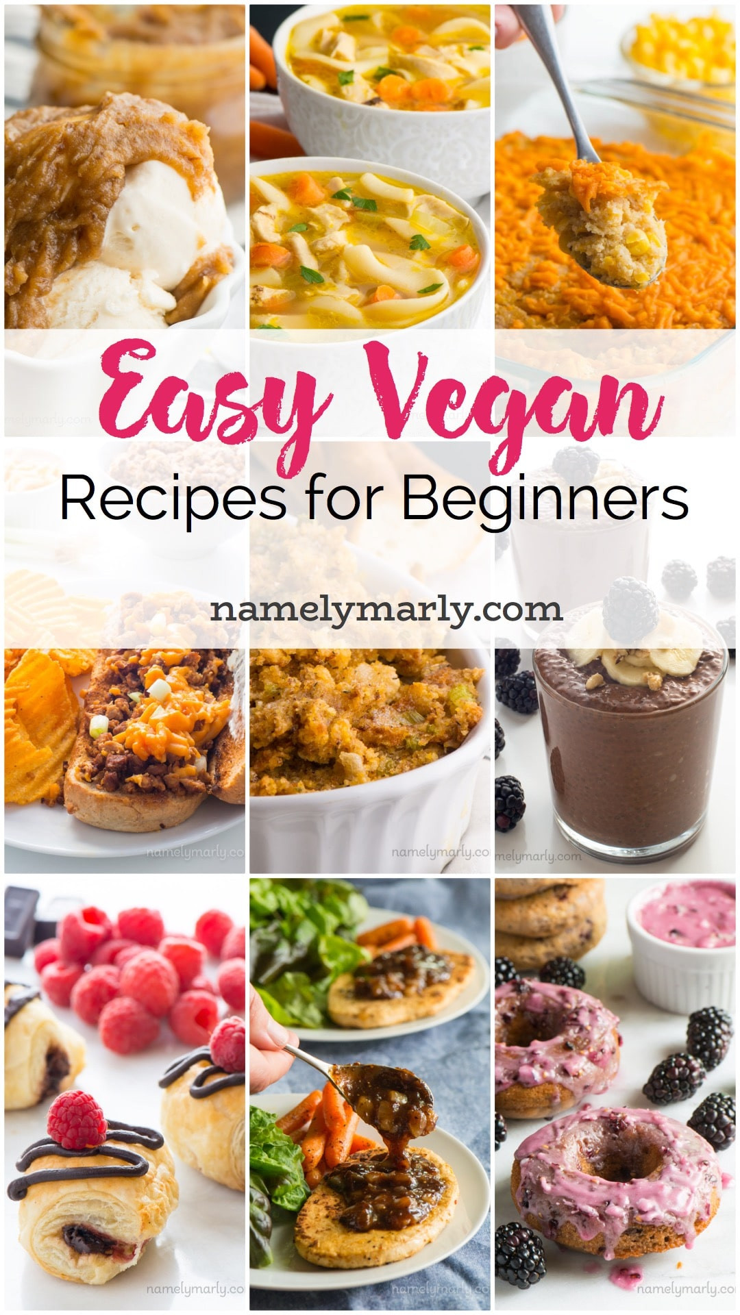 Easy Vegan Recipes  Simple Vegan Recipes for Beginners Namely Marly