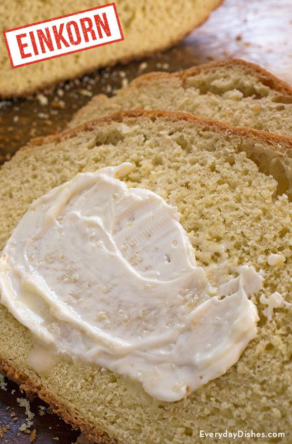 Einkorn Bread Recipe  Quick and Easy Sandwich Bread Made with Einkorn Flour