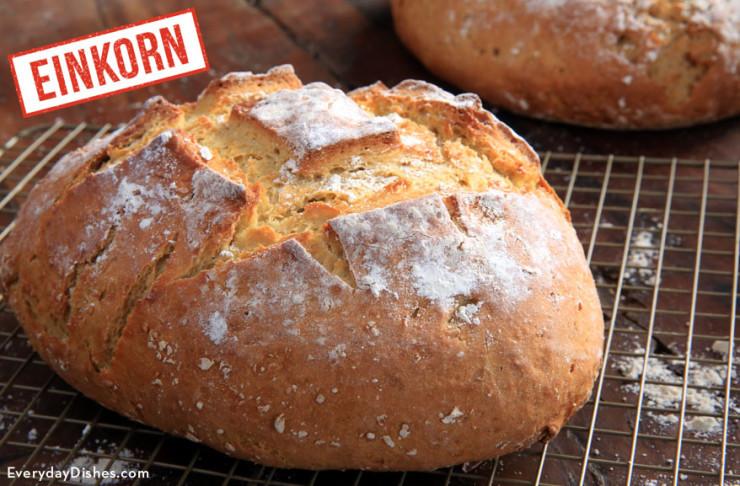 Einkorn Bread Recipe  Easy Dutch Oven Bread Recipe Video with Einkorn Flour