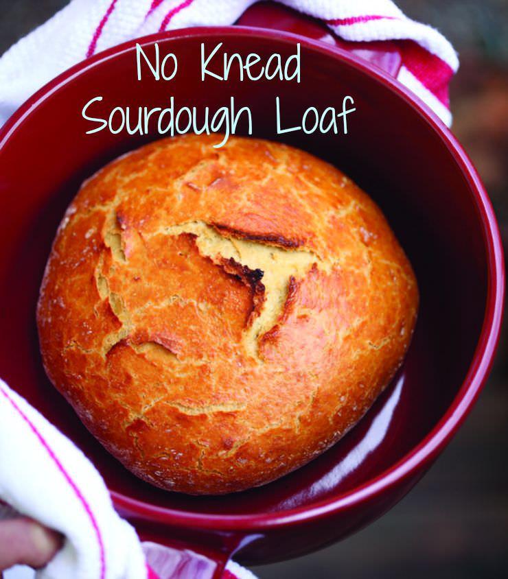 Einkorn Bread Recipe  No Knead Einkorn Sourdough Bread Recipe Moms with Girls