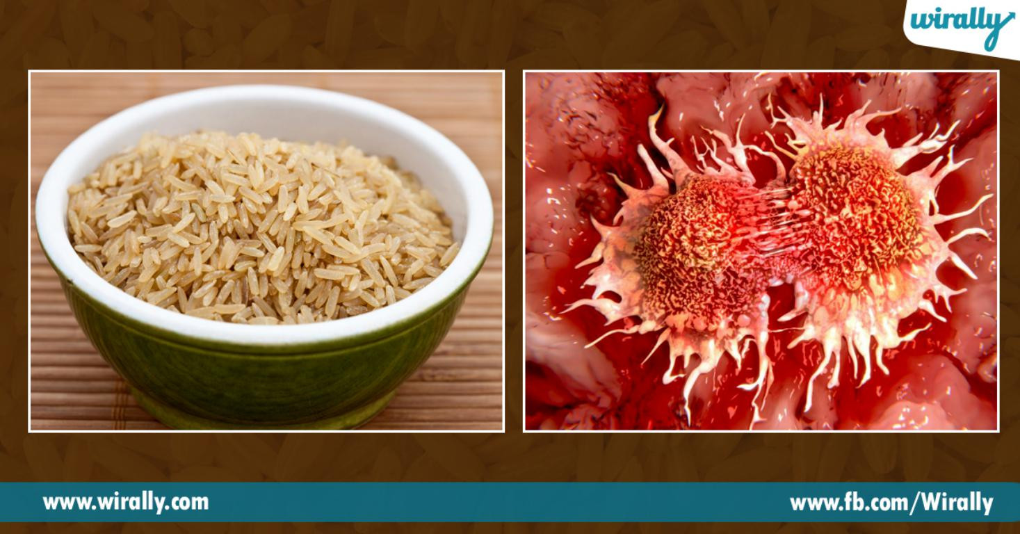 Fiber In Brown Rice  Why should we eat brown rice instead of white rice Wirally