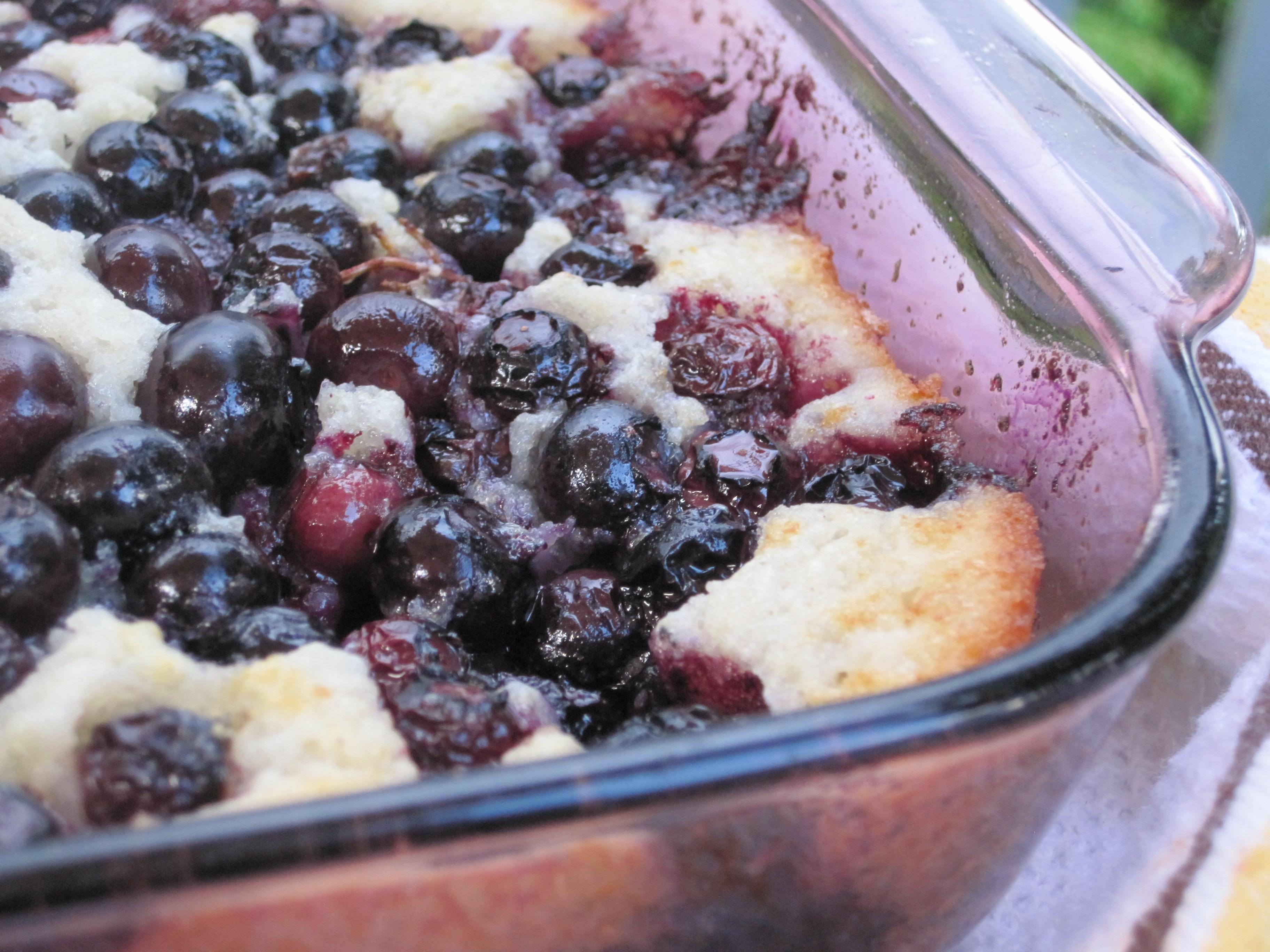Fresh Blueberry Desserts  Max's Fresh Blueberry Cobbler