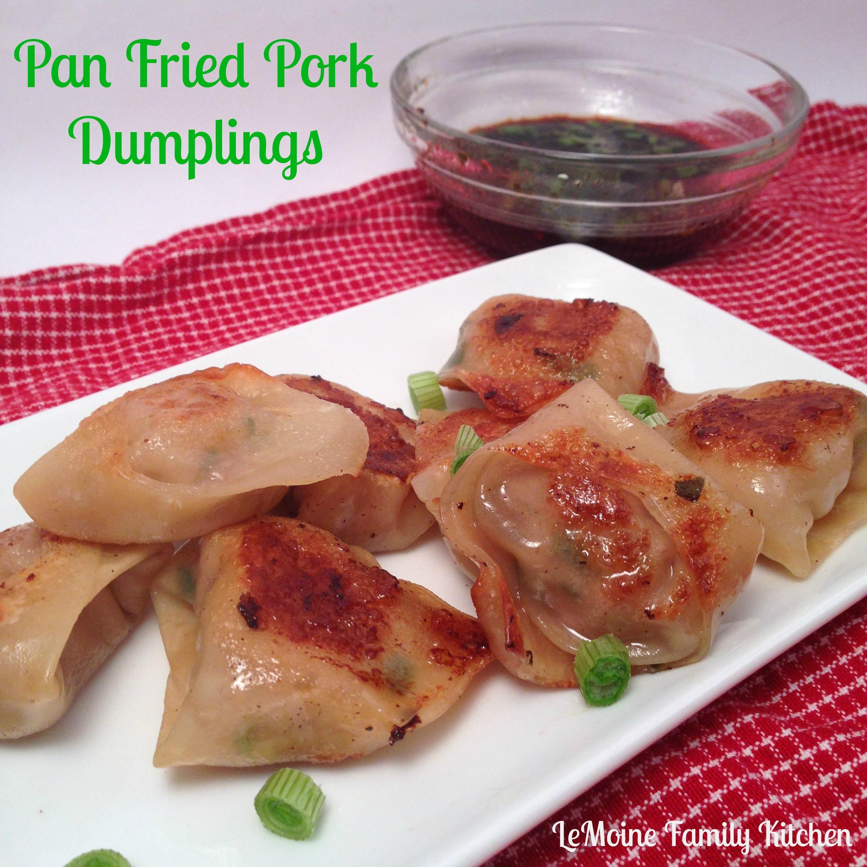 Fried Pork Dumplings  Pan Fried Pork Dumplings LeMoine Family Kitchen