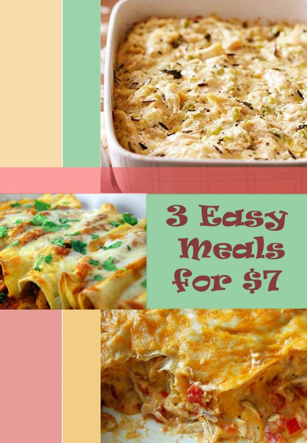Frozen Chicken Recipes For Dinner  $7 Bag of Frozen Chicken Breasts = 3 Easy Meals King