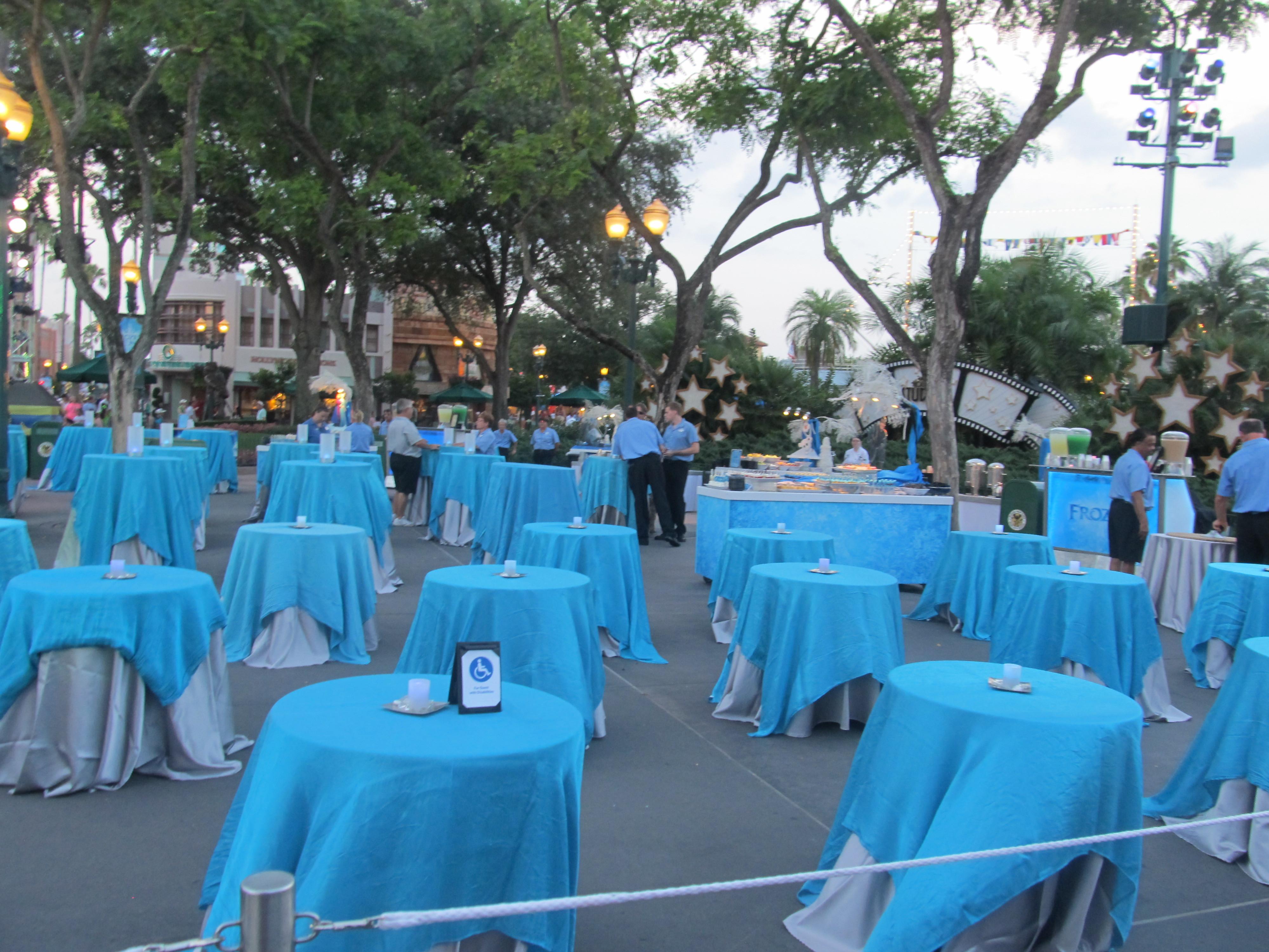 Frozen Dessert Party  Frozen Summer Fun Premium Package TouringPlans