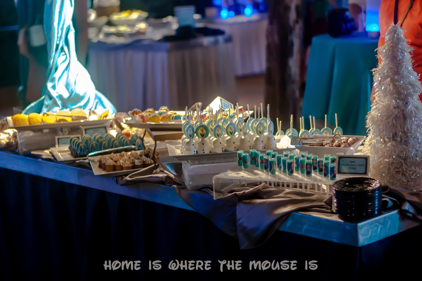 Frozen Dessert Party  DIY Frozen Dessert Party at Home