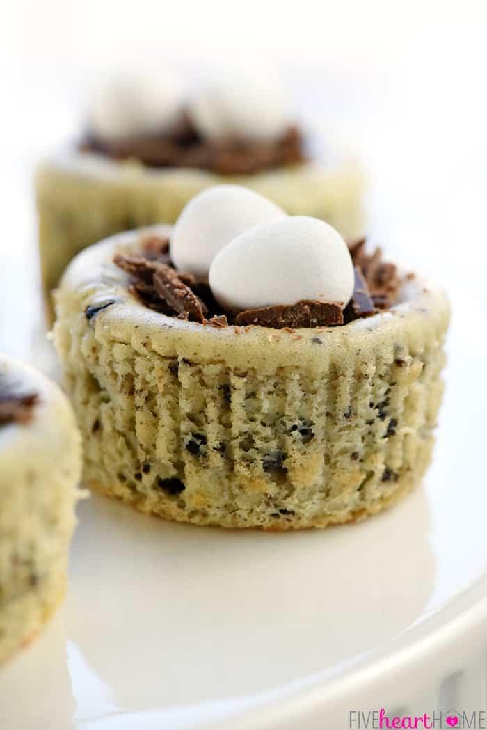 Fun Easy Dessert Recipes  Bird's Nest Mini Oreo Cheesecakes Easy Easter Dessert