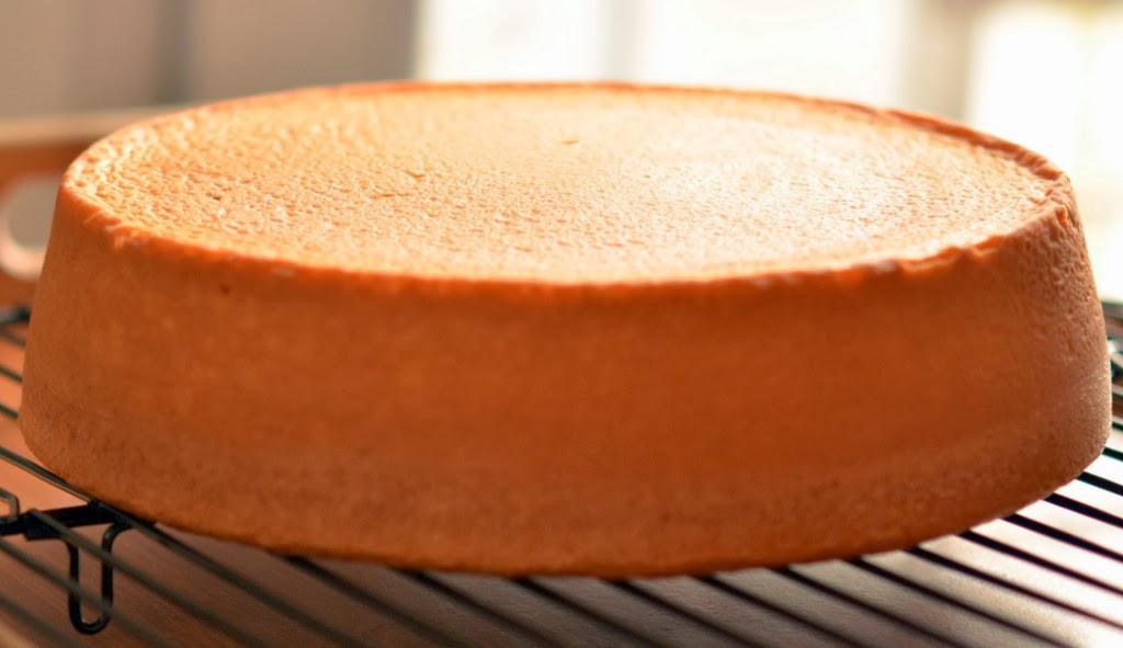 Genoise Sponge Cake  genoise