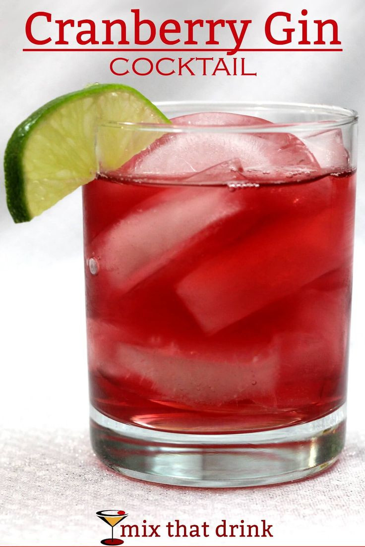 Gin Drinks Easy  The 25 best Simple gin drinks ideas on Pinterest