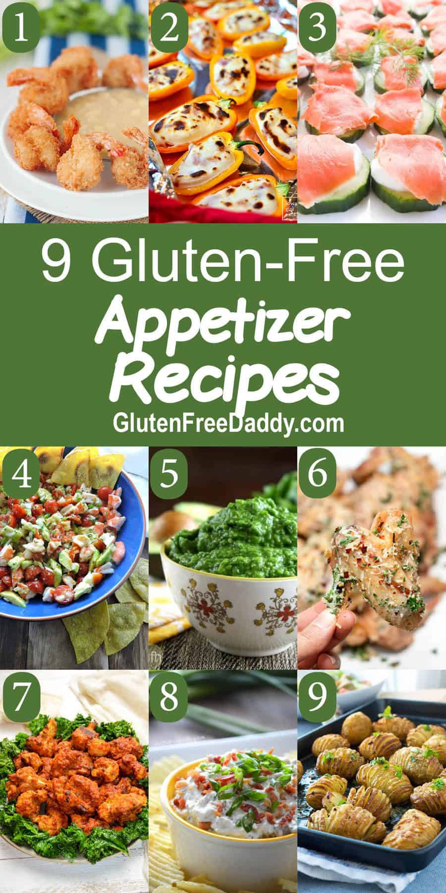 Gluten Free Appetizer Recipes  9 of the Best Ever Gluten Free Appetizers Recipes