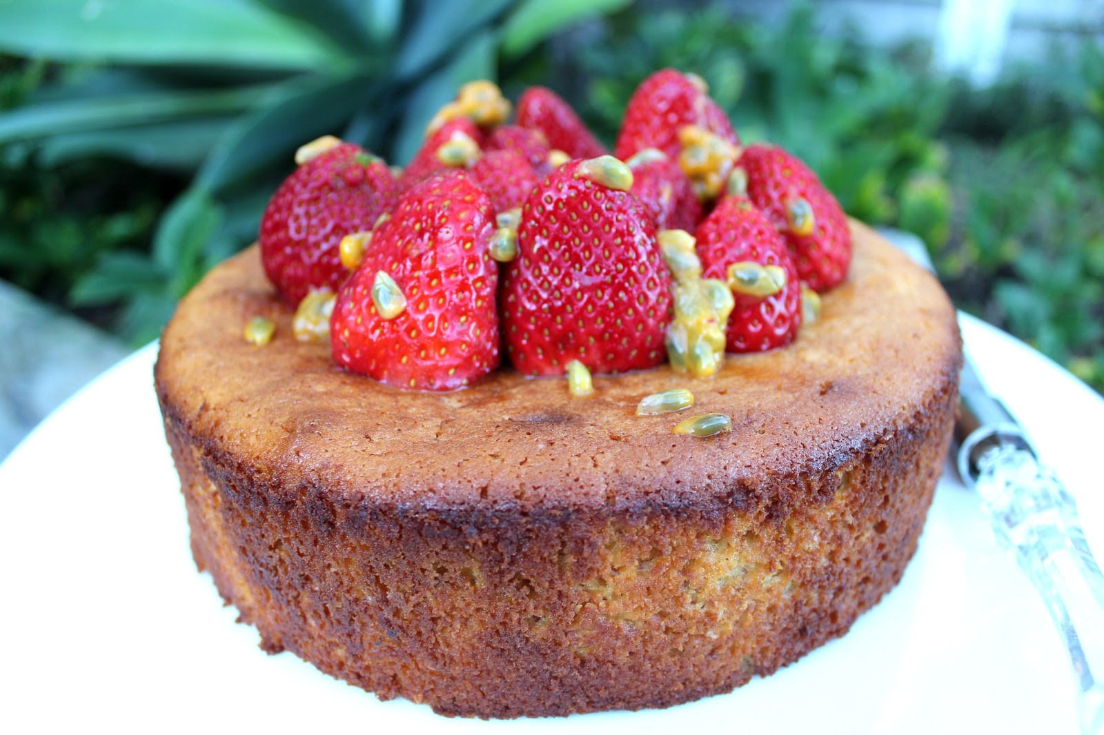 Gluten Free Cake Recipes  Gluten Free Cake Recipe