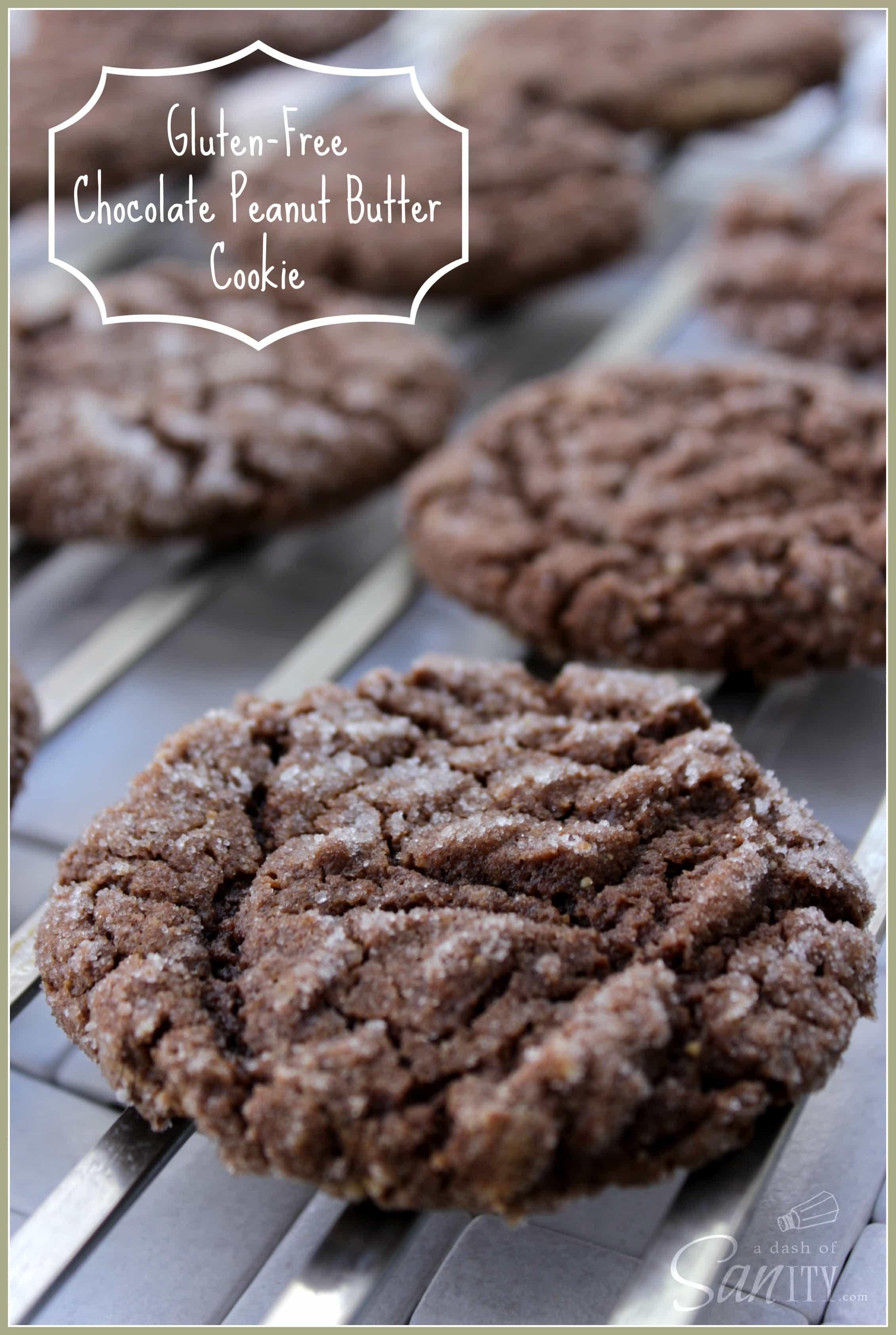 Gluten Free Peanut Butter Cookies  Gluten Free Chocolate Peanut Butter Cookies A Dash of Sanity