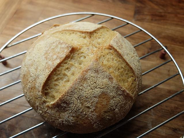 Gluten Free Sourdough Bread Recipe  Gluten free sourdough bread recipe Pembrokeshire Cook