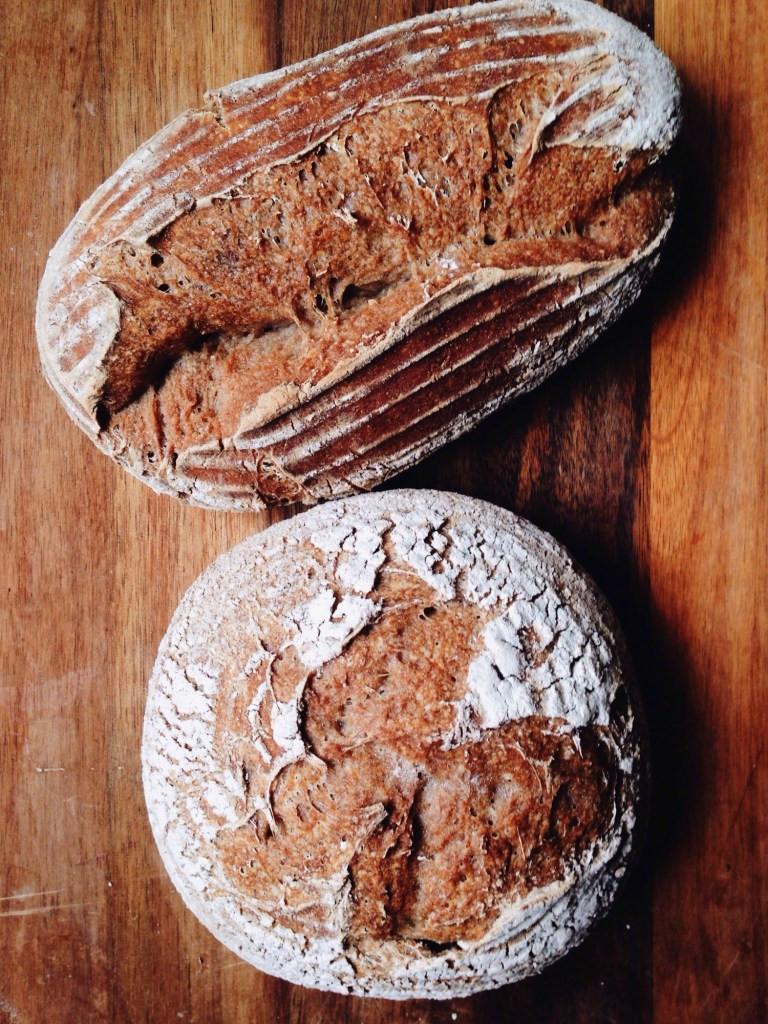 Gluten Free Sourdough Bread  gluten free sourdough bread