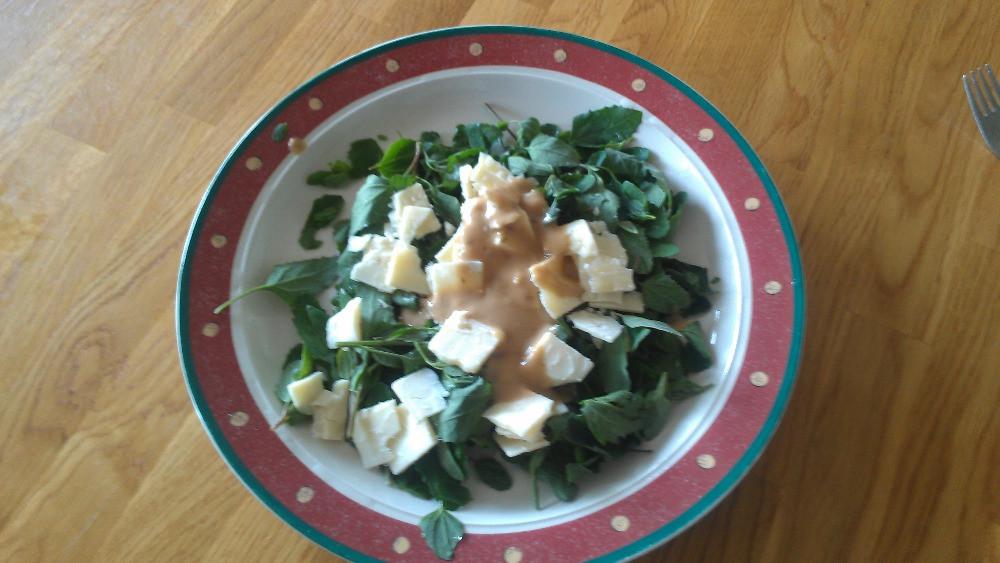 Gofundme Potato Salad  Fundraiser by Troy Benjegerdes 7 Elements Soybeans