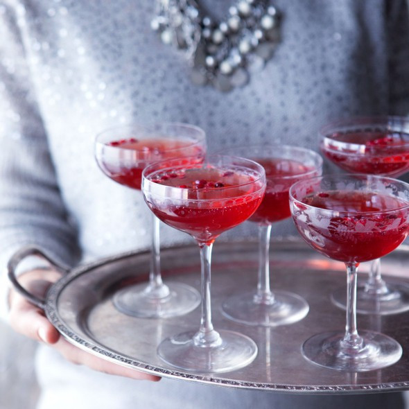 Good Gin Drinks  Pomegranate gin fizz cocktail recipe Good Housekeeping