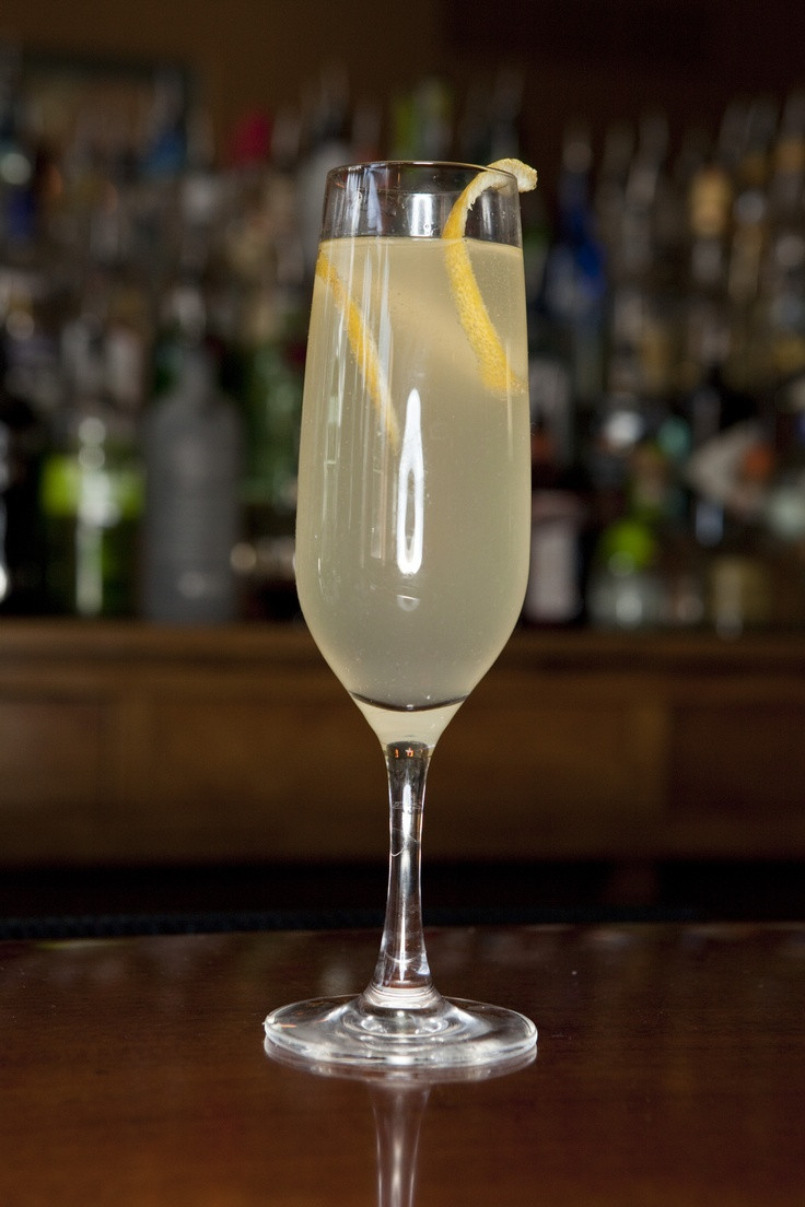 Good Gin Drinks  Signature Drinks 10 handpicked ideas to discover in Other