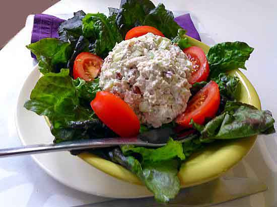 Gourmet Chicken Salad  Gourmet chicken salad at Mobile s Spot of Tea Hungry
