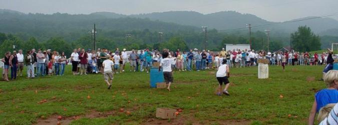 Grainger County Tomato Festival  Grainger Tomato Festival Information