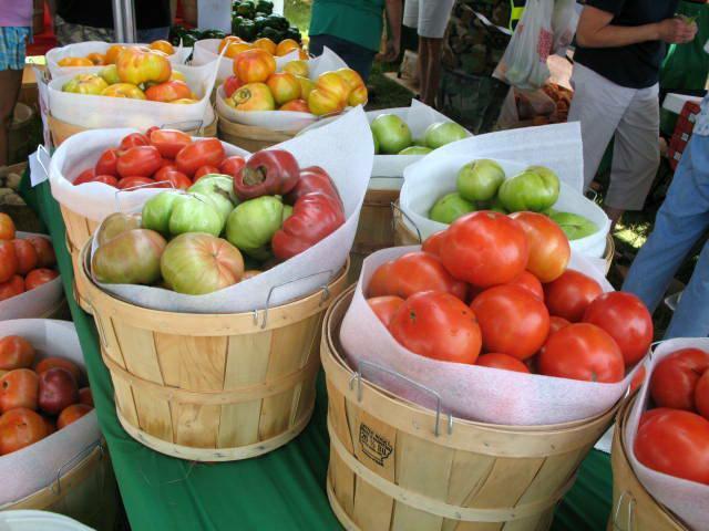 Grainger County Tomato Festival  blogging the 16th annual Grainger County Tomato Festival