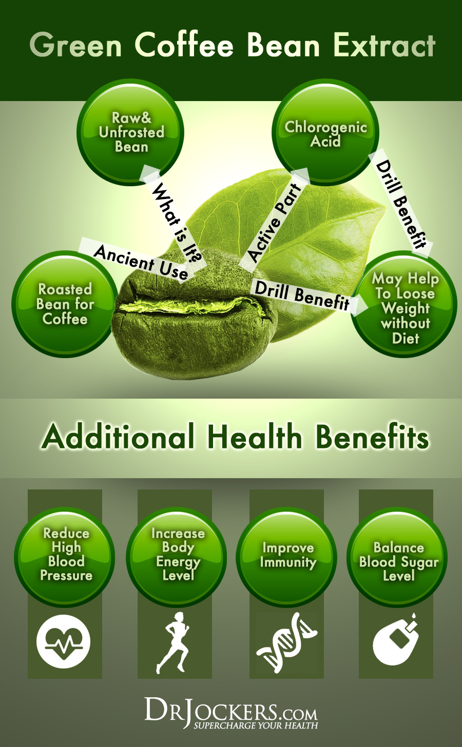Green Coffee Bean Extract  Does Green Coffee Bean Extract Help You Lose Weight