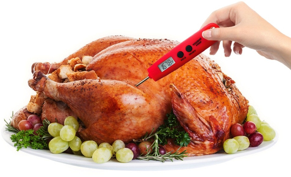 Ground Turkey Cook Temperature  How to Use a Meat Thermometer Internal Cooking