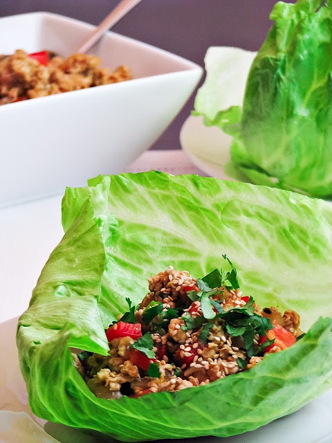 Ground Turkey Lettuce Wraps  30 best images about Nibbles Turkey on Pinterest