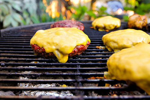 Hamburgers On The Grill  Guide to Grilling Great Burgers