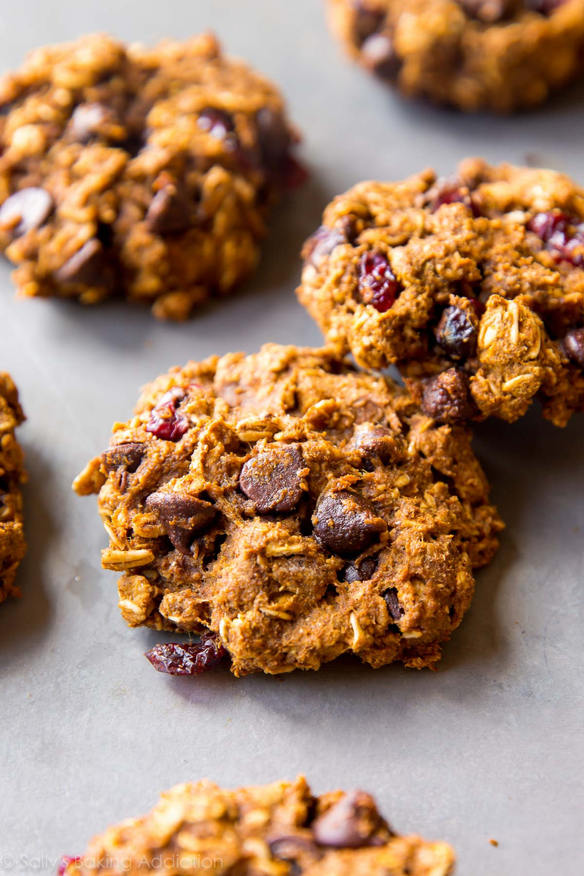 Healthier Chocolate Chip Cookies  healthy pumpkin spice cookies