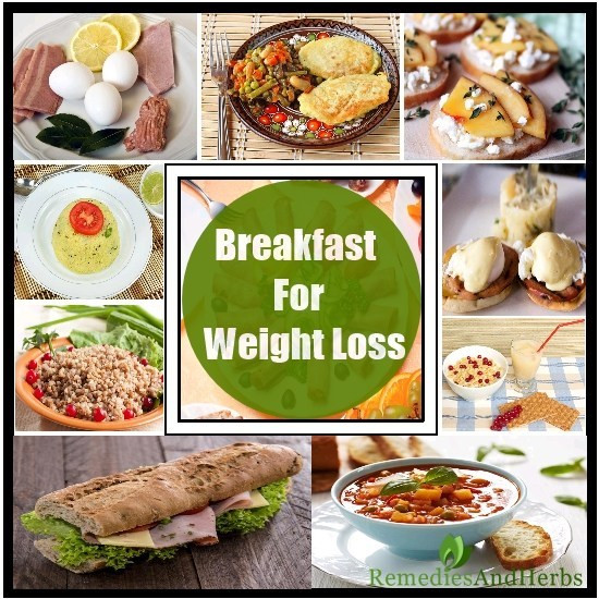 Healthy Breakfast To Lose Weight  Lean Healthy Breakfast Ideas For Losing Weight