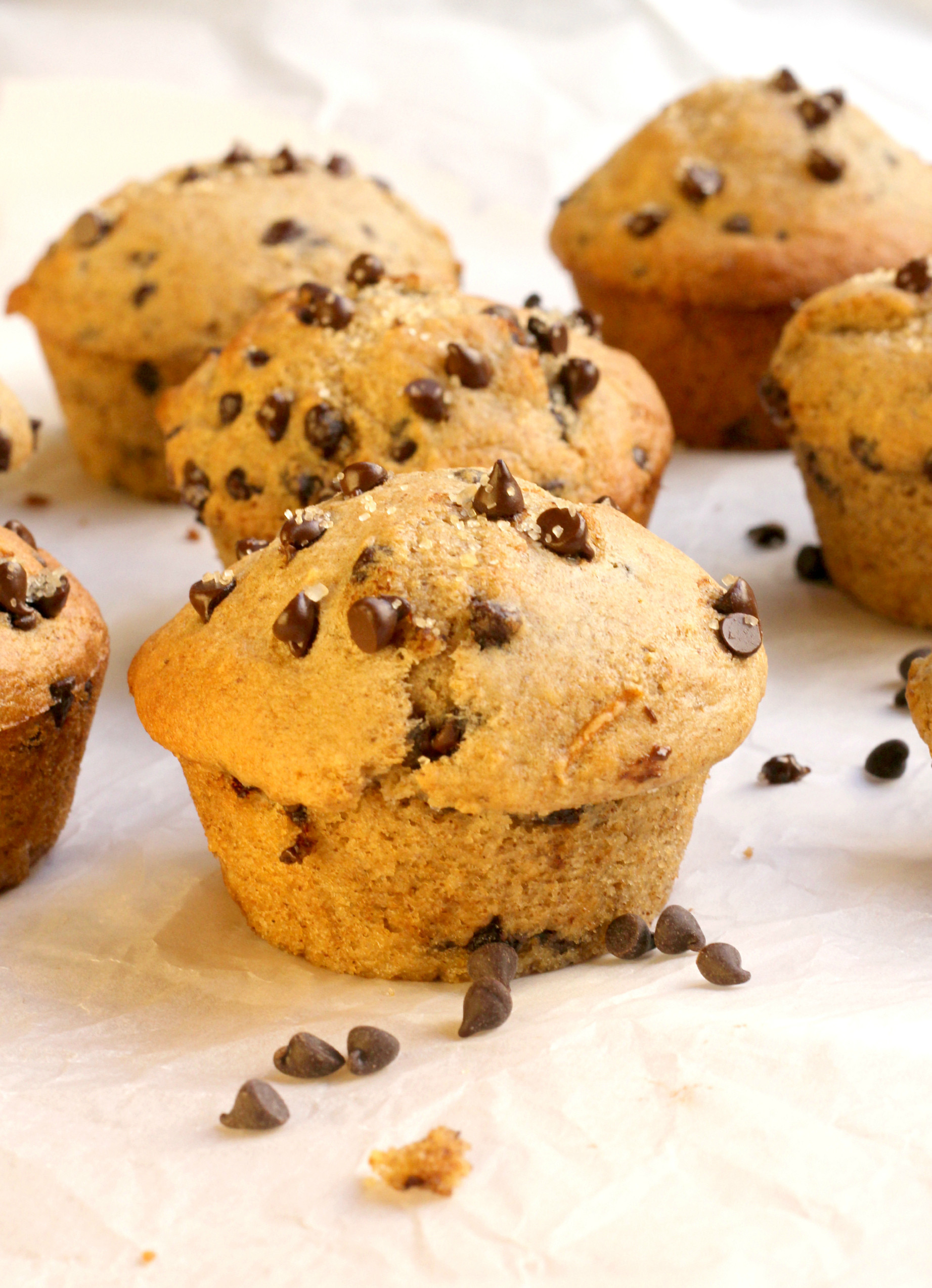 Healthy Chocolate Muffins  Healthy Chocolate Chip Muffins Bakery Style